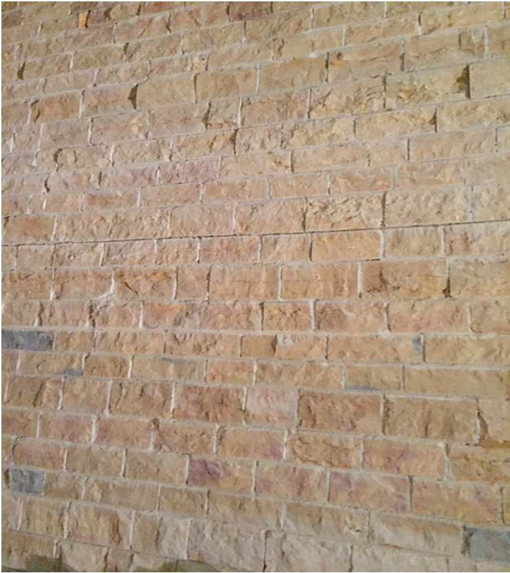 SETP Fort des Rousses murs
